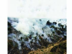 amazon-forest-fire