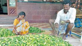 story-of-farmer-thangaraj
