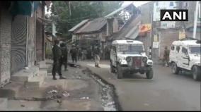 top-jem-commander-among-2-militants-killed-in-kashmir-encounter