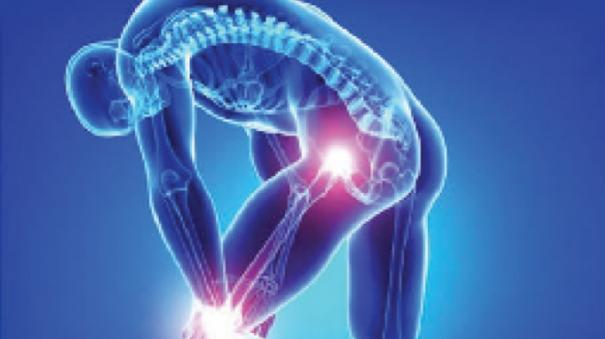 bone-and-knee-day-on-august-4