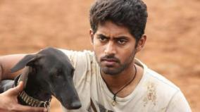 no-national-award-for-pariyerum-perumal