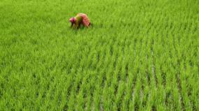2-lakh-agriculture-land-lost-in-20-years
