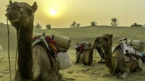 rajasthan-govt-to-provide-70-litres-free-water-everyday-to-residents-of-13-desert-districts