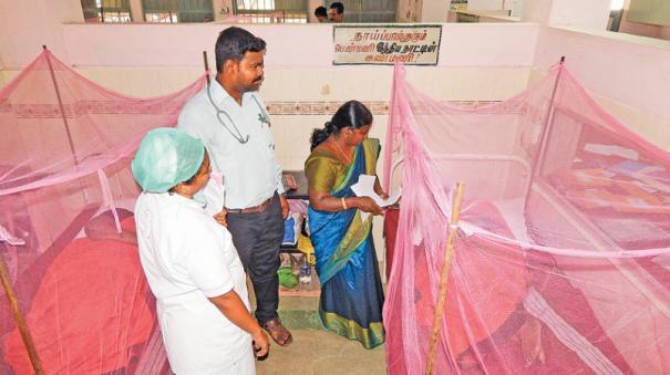 dengue-in-cuddalore