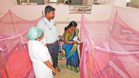 dengue-in-cuddalore