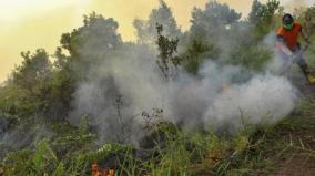 thousands-pray-for-rain-in-indonesia-as-forests-go-up-in-smoke