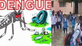 preventing-dengue-fever-in-government-schools-14-orders-from-the-school-department