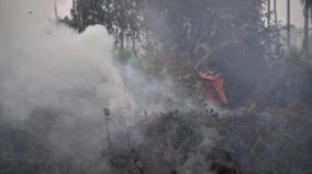 indonesia-blames-malaysian-companies-for-some-forest-fires
