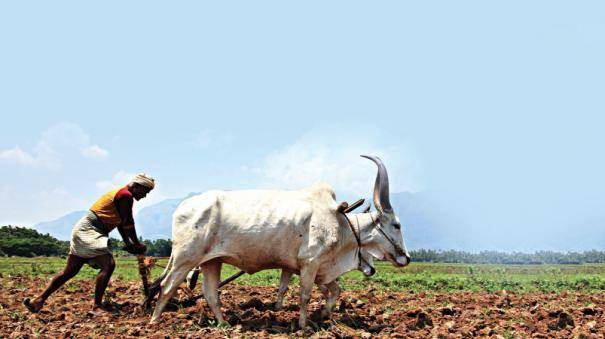 farmers-pension-scheme
