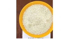 creation-of-special-paddy-varieties