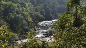 earth-has-lost-wilderness-area-the-size-of-india-since-90s-study