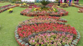flower-show-at-ooty