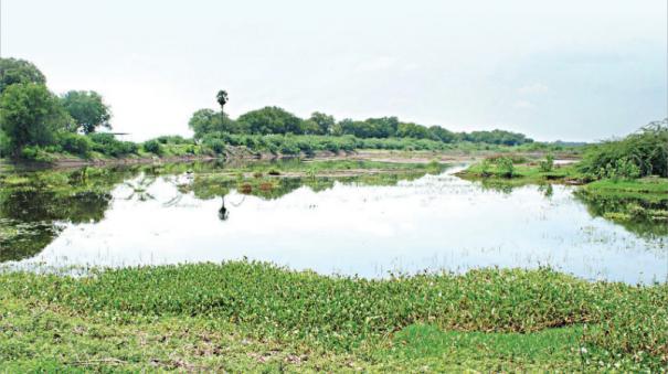 water-bodies-management