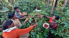 coffee-farmers-conference