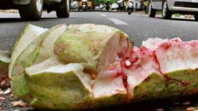 action-taken-in-case-of-accident-pumpkin-breaking-on-roads-advice-of-traffic-police