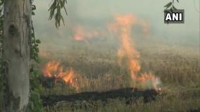 stubble-burning-continues-in-haryana-s-kaithal