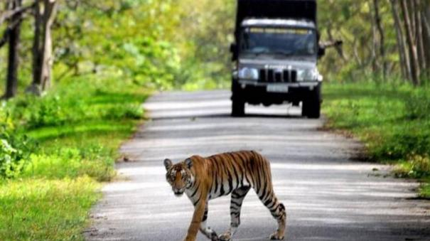 toxic-air-posing-threat-to-wildlife-in-kanpur