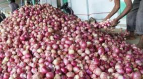 pvt-traders-place-onion-import-orders-1-000-tonnes-expected-by-month-end-govt-official
