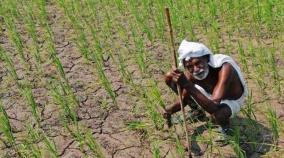 rajasthan-thousands-of-farmers-denied-crop-insurance-claims