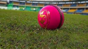what-is-special-about-the-pink-test-ball