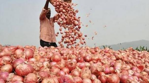 mmtc-contracts-to-procure-6-090-tonnes-onion