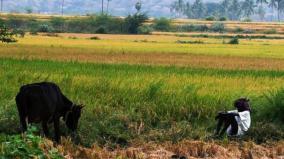 uzhavan-app-sivagangai-farmers-express-disappointment