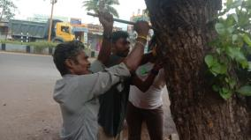 nails-in-trees-removed-in-uthamapalayam