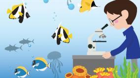 fisheries-expert