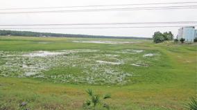 rain-at-villupuram