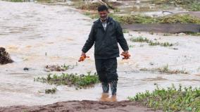farm-land-affected-due-to-rain-in-nilgiris
