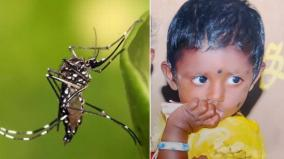 dengue-claims-one-life-in-virudhunagar