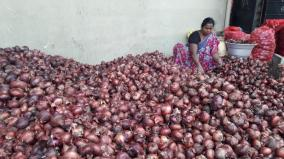 two-containers-of-imported-onions-reach-dindigul