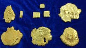 customs-seize-gold-worth-rs-31-lakh-chennai-air-port