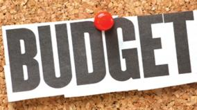 budget-in-feb-1