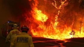 australian-pm-apologises-for-vacation-as-firefighters-killed-in-huge-blazes
