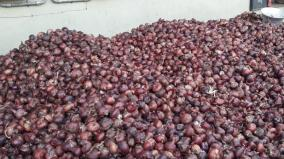 onion-price-in-madurai-still-not-under-control