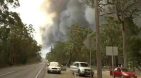thousands-of-holidaymakers-and-locals-were-trapped-on-a-beach-in-fire-ravaged-southeast-australia