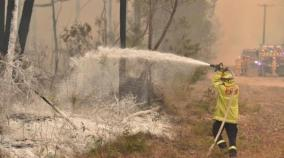 australia-fires-mogo-zoo-animals-saved-by-staff-efforts