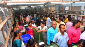 local-elections-vote-counting-strike-in-coimbatore-patavampally-panchayat