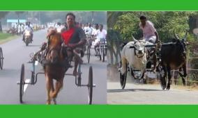 high-court-barred-from-nagapattinam-thirukkadoor-rakla-race