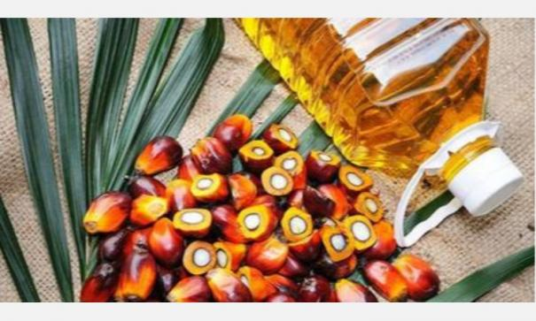 malaysian-palmolein