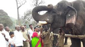 elephant-refreshing-camp-inaugrated-at-pollachi