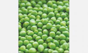green-peas-import
