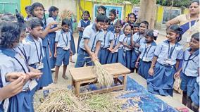 paddy-harvesting-program