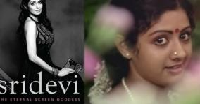 sridevi-s-biographer-wanted-to-know-many-things-about-her