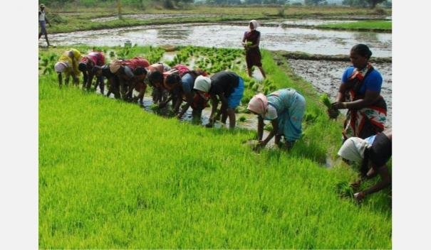 tamilnadu-agricultural-budget