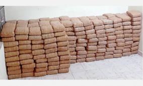 ganga-smuggling