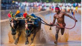 sai-to-devise-course-for-kambala-runner-srinivas-gowda-after-record-feat