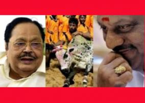 why-ops-called-jallikattu-nayakan-dhuraimurugan-in-assembly