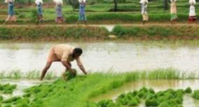 tamilnadu-government-published-cauvery-deltas-protected-agricultural-special-zone-act-in-gazette